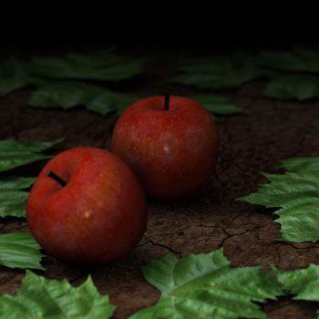 apples rendering